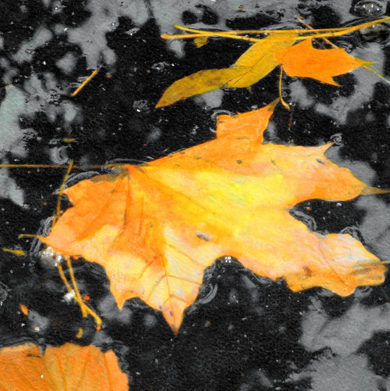 Dead Leaves, Zomerhuisje