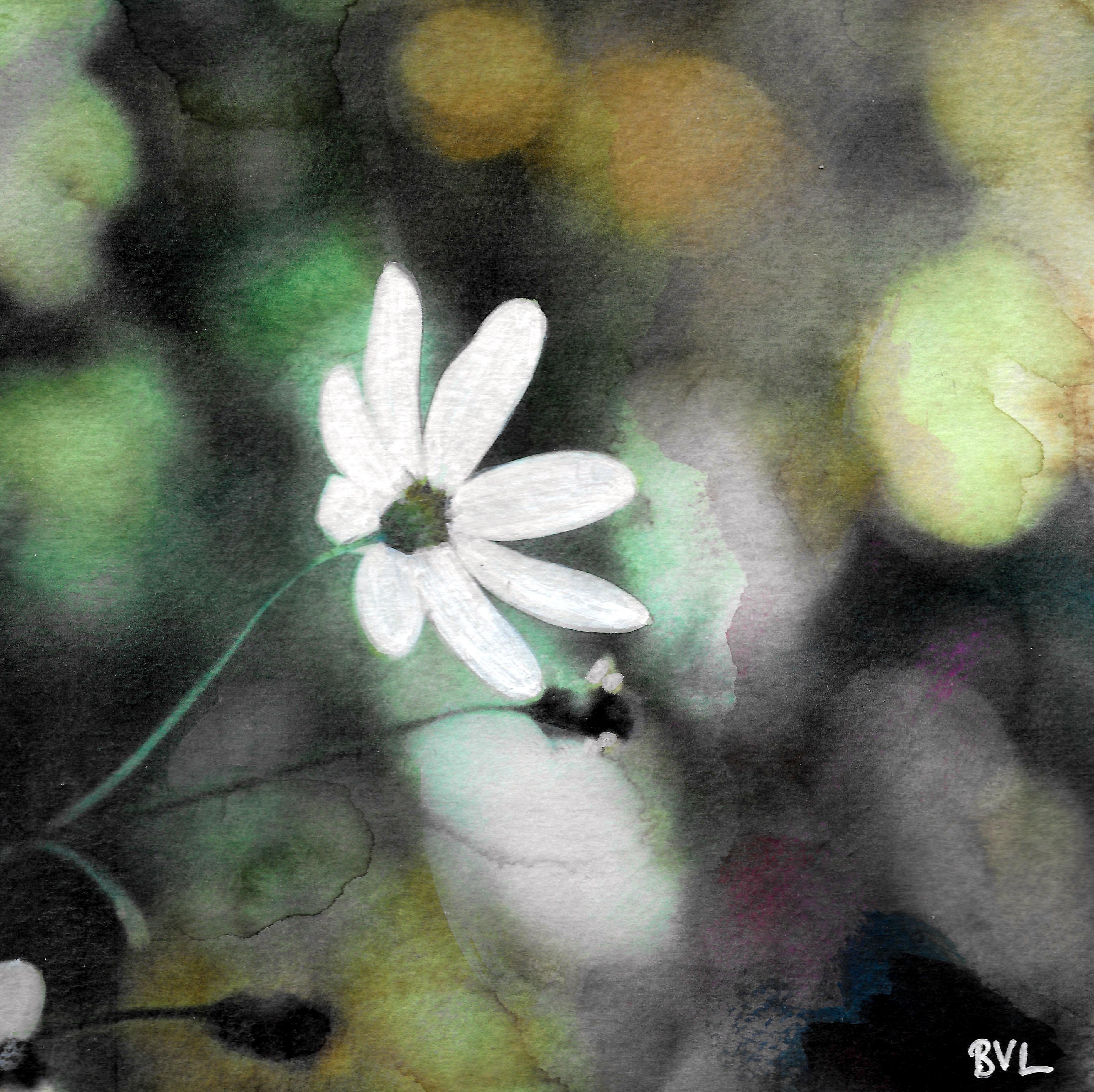 Witte bloem, Belasting