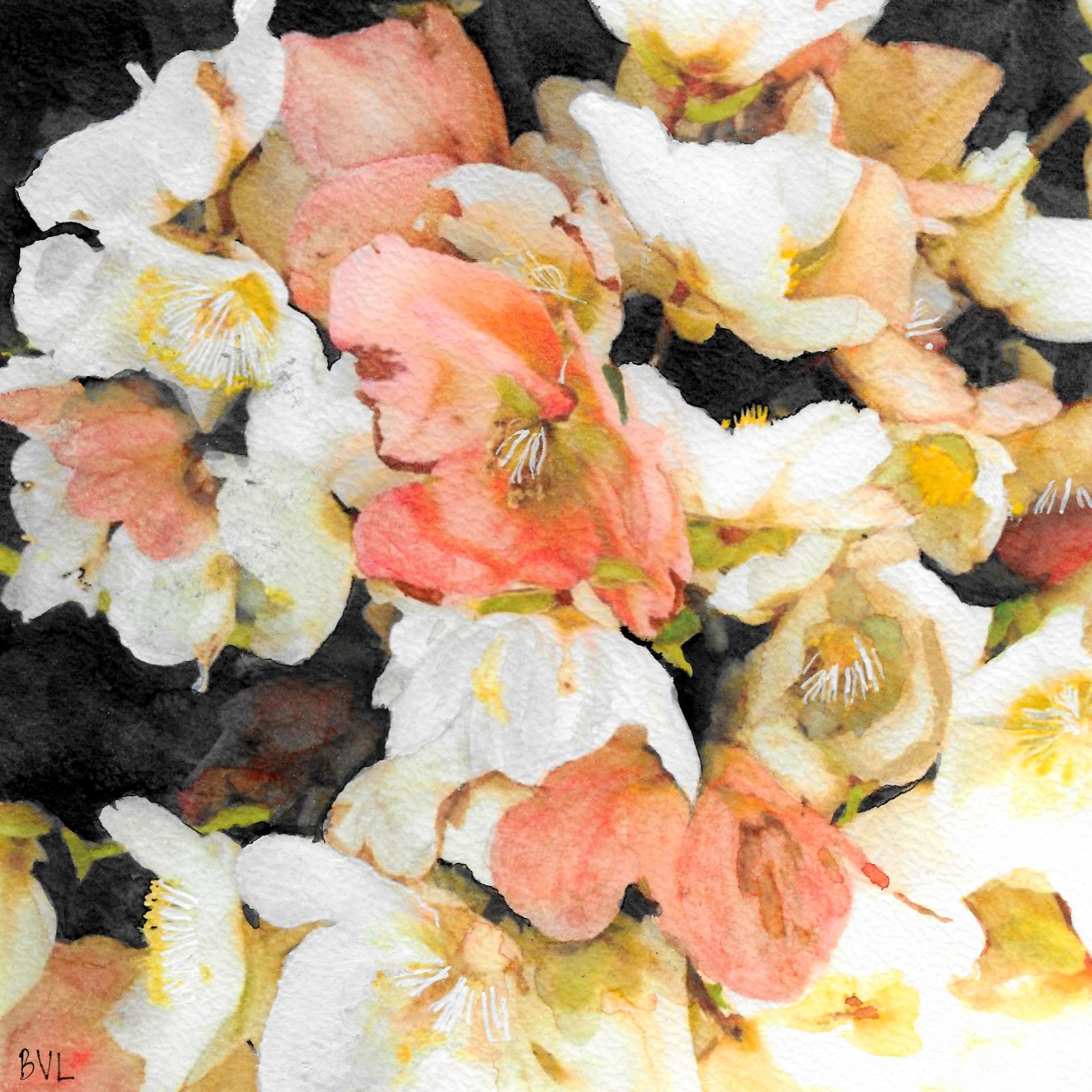 Witte en Roze Bloemen